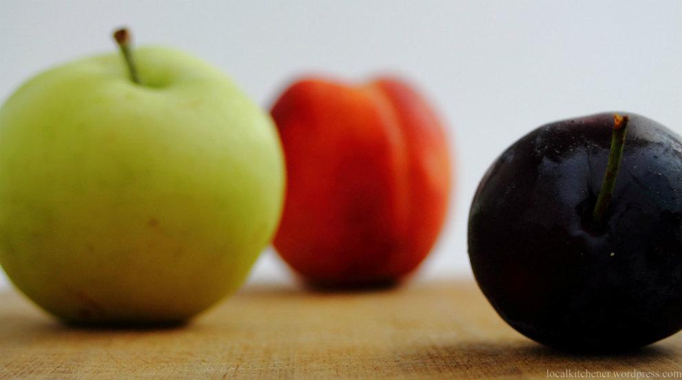 Photo of Непречена бербата на  сезонско овошје во Кумановско