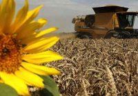Задруги и консолидирано земјиште за конкурентно земјоделство