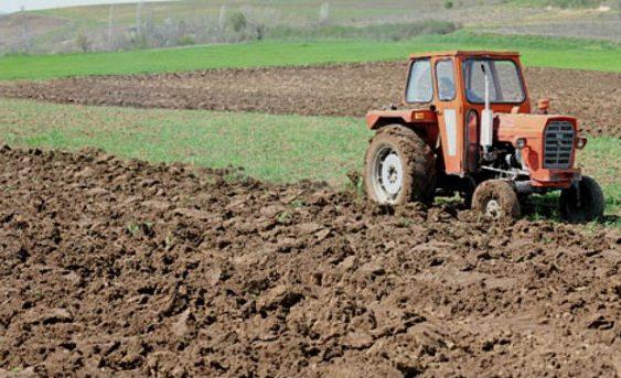 Министерството за земјоделство, шумарство и водостопанство објавува два јавни огласи за закуп на земјоделско земјиште