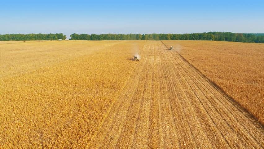 Photo of Закуп на државно земјиште поголемо од 3 хектари