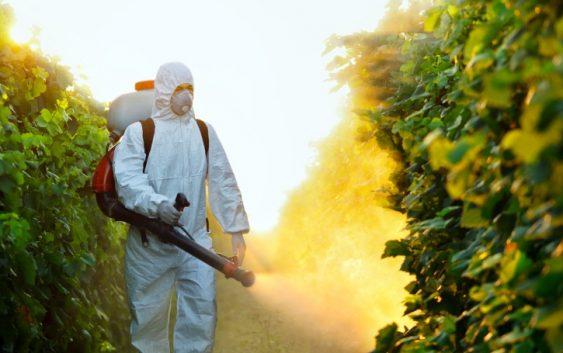 Правилна употреба на личната заштитна опрема при користење на пестицидите