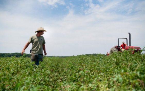 662 лица конкурираа за мерката Млад земјоделец