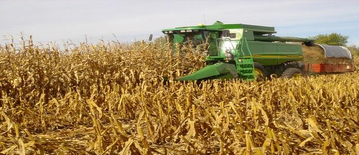 Photo of Заврши жетвата на пченицата со 40 проценти помали приноси од лани