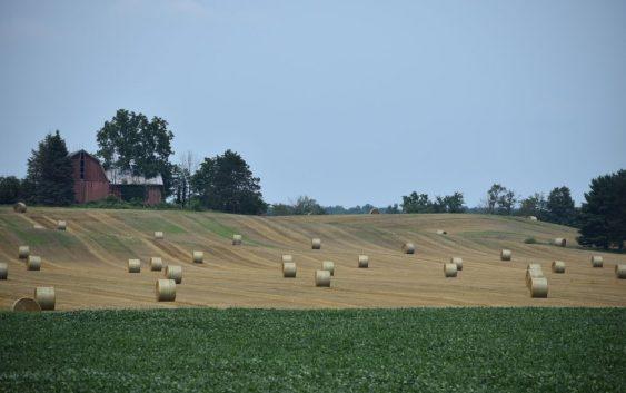 Земјоделците да ги пријават штетите од невремето на 11-ти септември