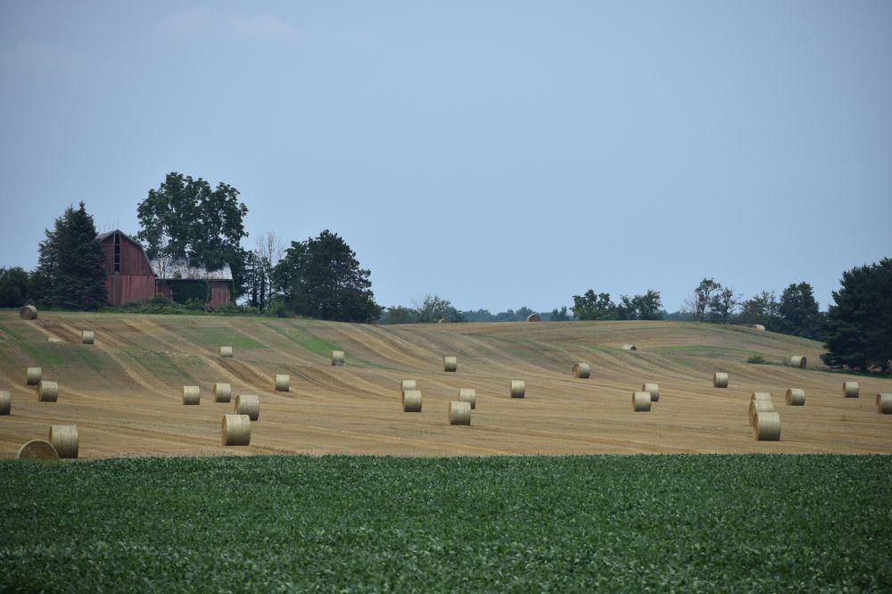 Photo of Земјоделците да ги пријават штетите од невремето на 11-ти септември