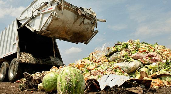 Македонија со закон ќе го регулира фрлањето храна