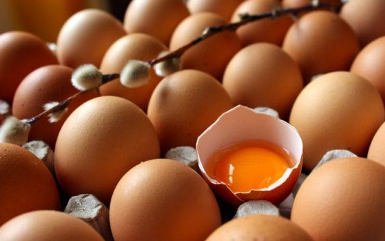 Скандалот со штетните јајца се прошири во 40 држави