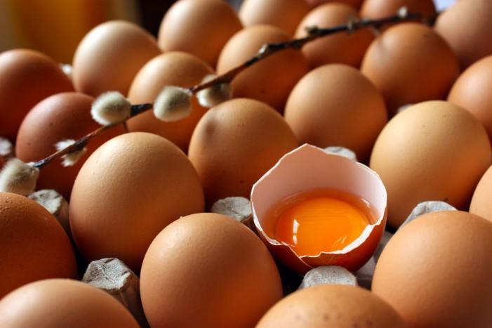 Photo of Скандалот со штетните јајца се прошири во 40 држави