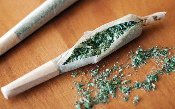 Пронајдена поголема количина марихуана во дом на прилепчанец