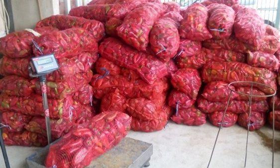Откупениот зеленчук да се исплаќа за 15 дена