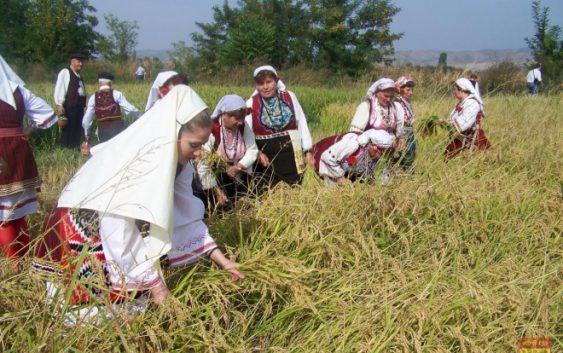 """Започна 26-та по ред манифестација """"Денови на кочанскиот ориз"""""""