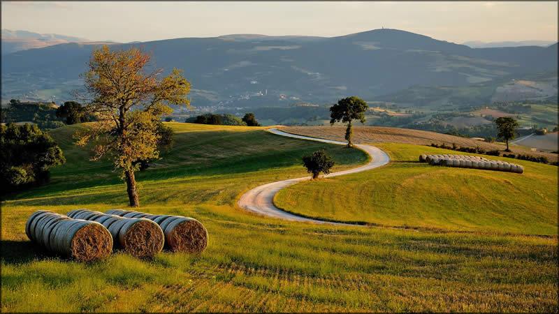 Photo of Земјоделците од Куманово, Липково и Старо Нагоричане најмногу аплицирале за субвенции за житни култури