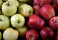 Заштита на автохтони сорти овошје во Делчево