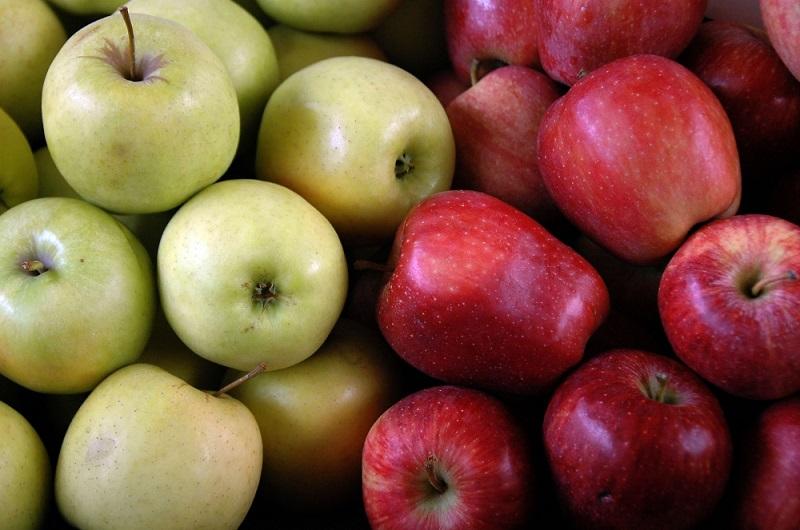 Photo of Заштита на автохтони сорти овошје во Делчево