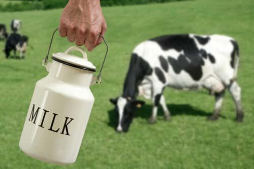 Photo of Привршува пријавувањето субвенции за млеко