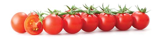 """Photo of Одгледување на """"cherry"""" домати"""