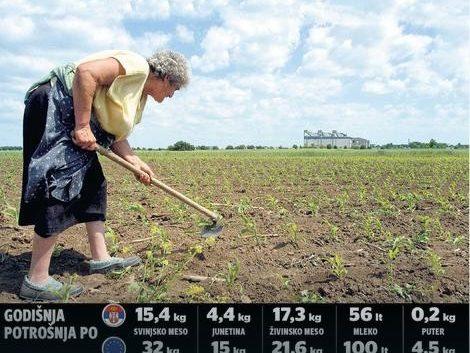 Kолку луѓе може да нахрани германски, австриски, француски земјоделец?
