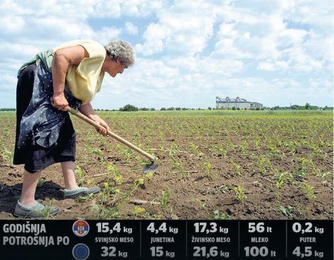 Photo of Kолку луѓе може да нахрани германски, австриски, француски земјоделец?