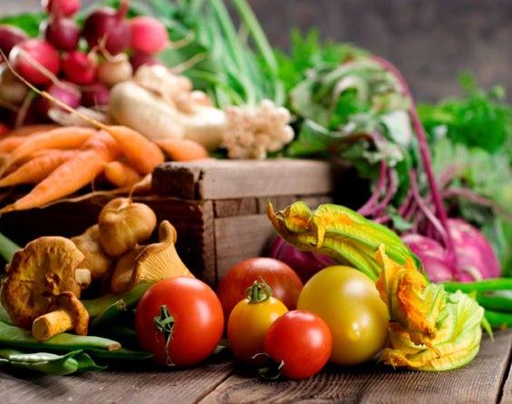 Photo of Меѓународен конгрес за квалитет и безбедност на храна