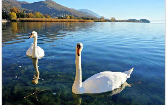 Тилевски вети мерки за поголема заштита на Охридското Езеро