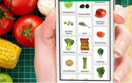 """""""Органски пат"""" – апликација за пребарување органска храна во Македонија"""