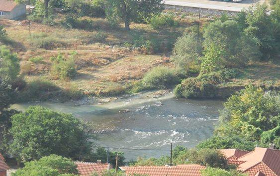 Помор на риба во реката Тополка кај Велес