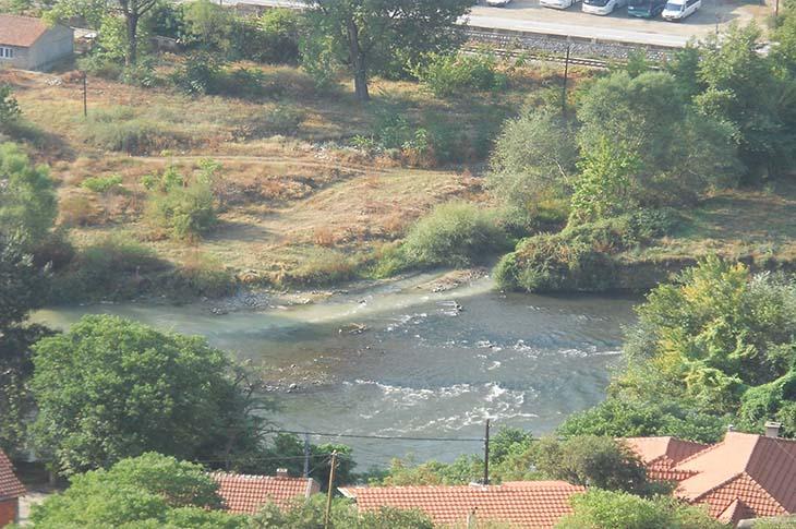 Photo of Помор на риба во реката Тополка кај Велес
