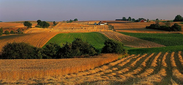 Photo of Работилница за студијата за мали сопственици и земјоделски стопанства