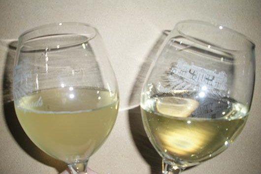 Нега на младото вино