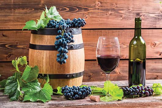 Photo of Зошто се користат ензими при производство на вино?