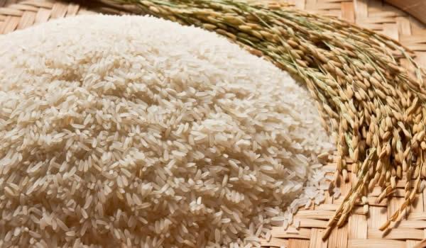 """Photo of Зголемени приноси на ориз од употребата на """"Тераграмин"""" во Кочани"""
