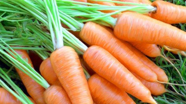 Photo of Чување на морковот во зимски услови
