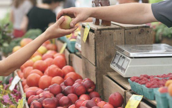 Измените во законот за персоналниот данок нема да им наштетат на земјоделците вели премиерот Заев