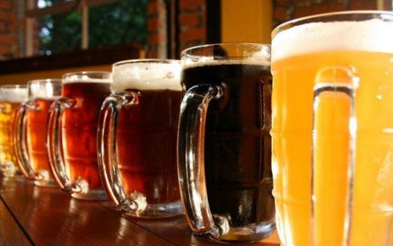 Прв собир и дегустација на пиво од домашни производители