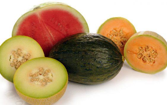 Калемење на лубеници и дињи