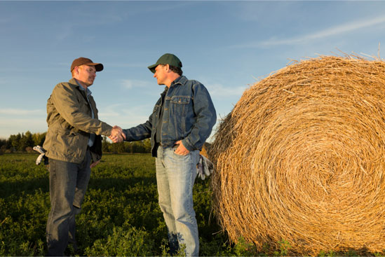 Photo of Владата донесе пакет одлуки за секторот земјоделство