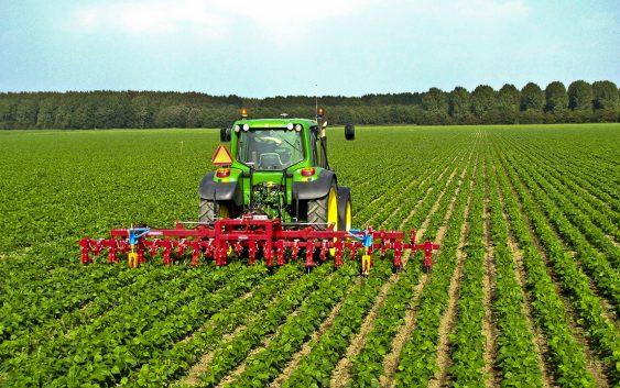Новиот земјоделски данок нема да донесе големи товари, сметаат експертите
