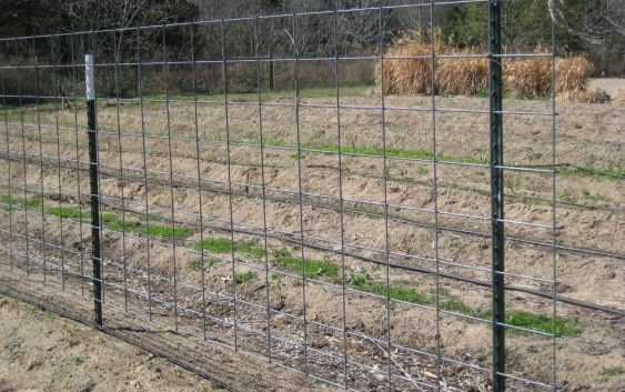 Ограда за физичка и психичка заштита на животните