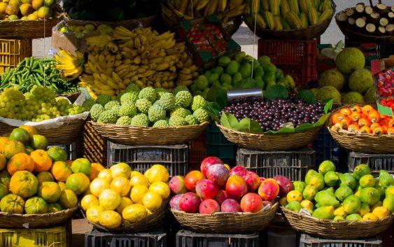 Поскапување на овошјето и зеленчукот ќе предизвика воведувањето персоналец за сите земјоделци
