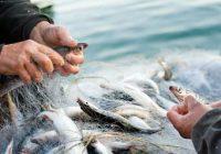 ЈАВЕН ПОВИК за доставување барање за користење средства за реализација на мерки Програмата за финансиска поддршка во рибарството