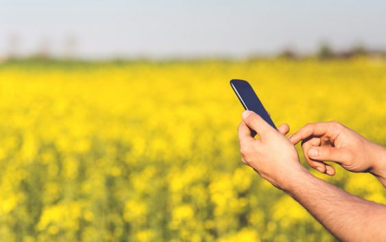 Субвенции за невладини организации од областа на земјоделството