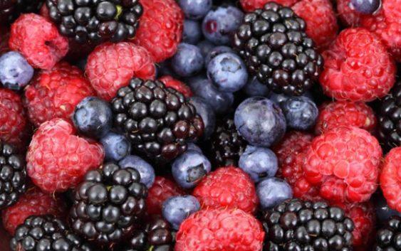 Шумските плодови од Кожуф – здравје и заработка