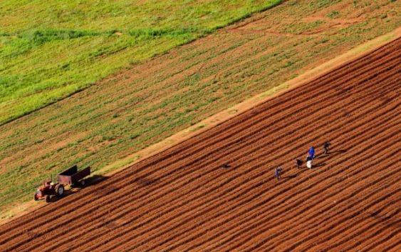 Зелена нафта за земјоделците од следната година