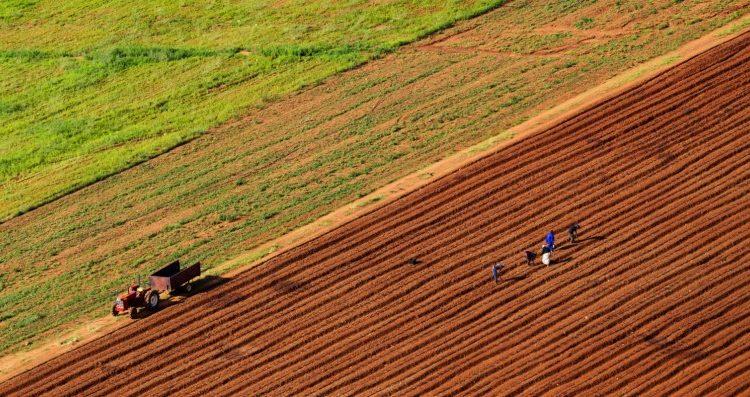 Photo of Зелена нафта за земјоделците од следната година