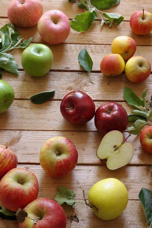 Photo of Чување на јаболката во зимски услови