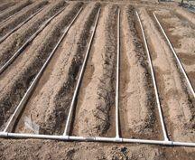 Photo of Правилно залевање на почвата
