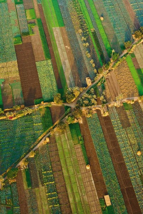 Photo of Окрупнување на земјоделско земјиште
