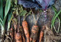 Уште 5 дена пријавување за субвенции за органско производство