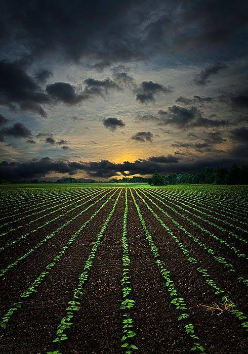 Photo of Економските сметки во земјоделството