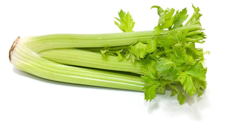 Photo of Начини на одгледување на целер